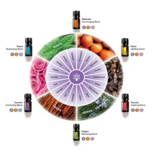 Essential Wellness Oils Chart